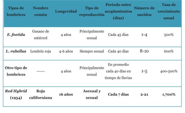 tabla 1: algunas características demográficas en tres lombrices rojas